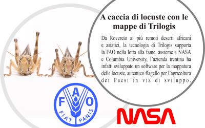 Trilogis, NASA e FAO assieme contro la piaga delle locuste