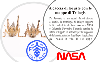 Trilogis, NASA and FAO together against locusts